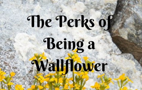 'The Perks of Being a Wallflower' Captures True High School Experiences