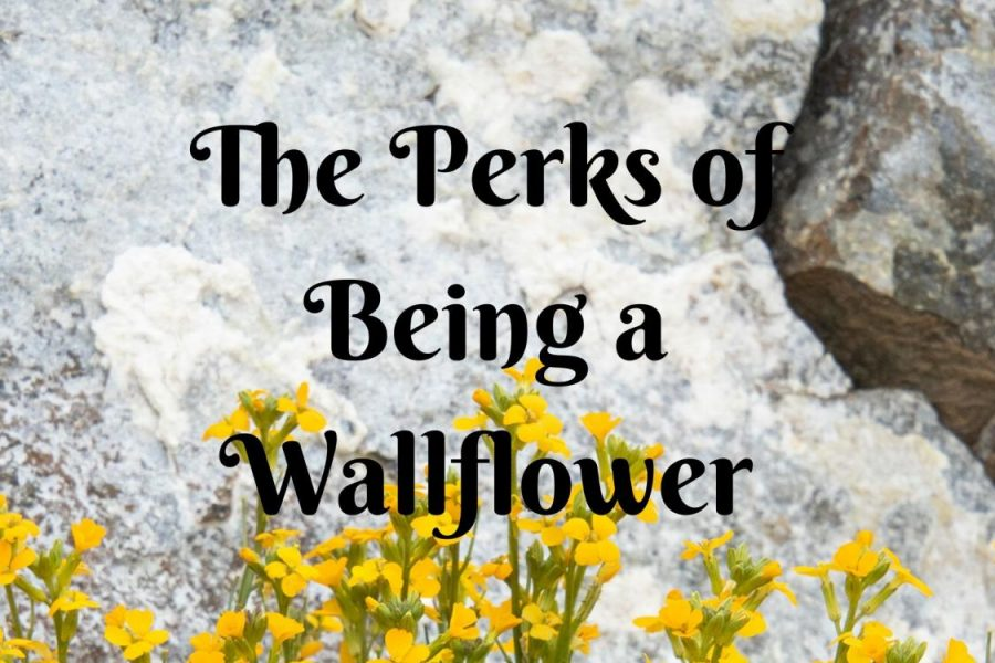 'The Perks of Being a Wallflower' by Stephan Chbosky is about a socially awkward wallflower. In this book, he takes the reader along with him on his journey of freshman year in high school. He tells the stories of him and his friends in this book published in the late 90's. Graphic by Emily Malone.