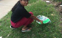 Sneha Nangunoori in '23 cleans waste in her community.
