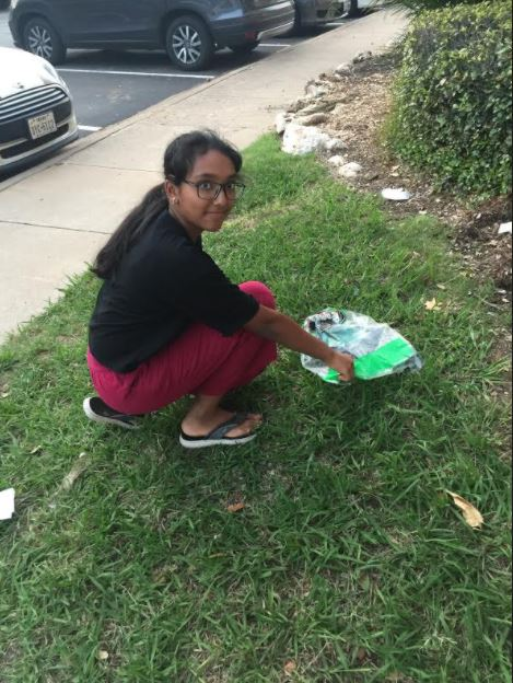 Student+Council+Organizes+World+Cleanup+Day