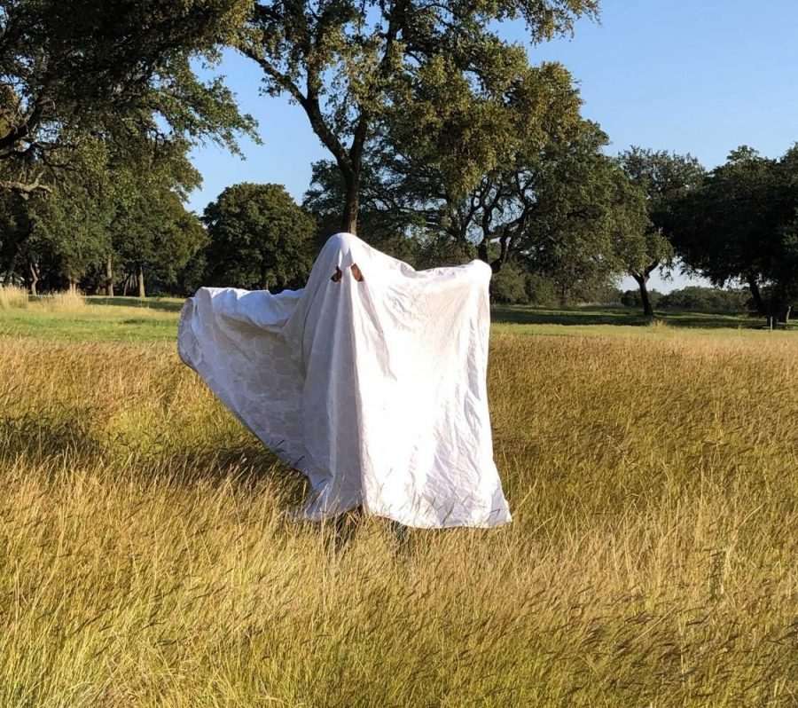 Katie Hendler '22 poses as a ghost in a field. She went with a friend to do the photoshoot. This is a great example for the ghost photoshoot; put your hands up so it looks like the picture has more movement.  Photo courtesy of Katie Hendler '22