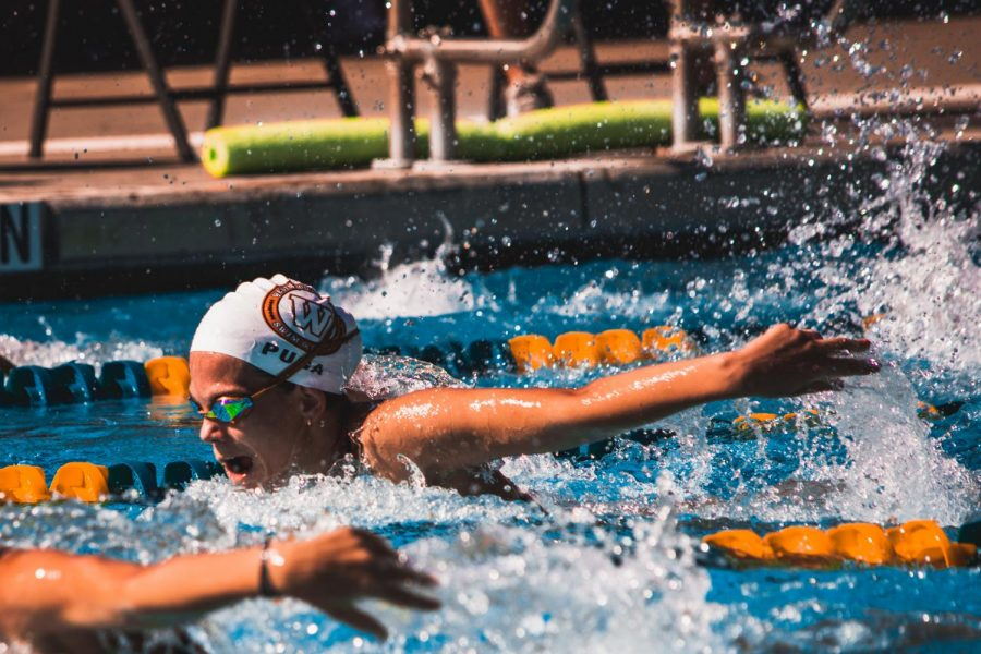 Mayra Puga '21 swims the 100 yard fly against stiff competition. Puga shaved time off of her personal best and placed 9th for the Westwood Swim Team.