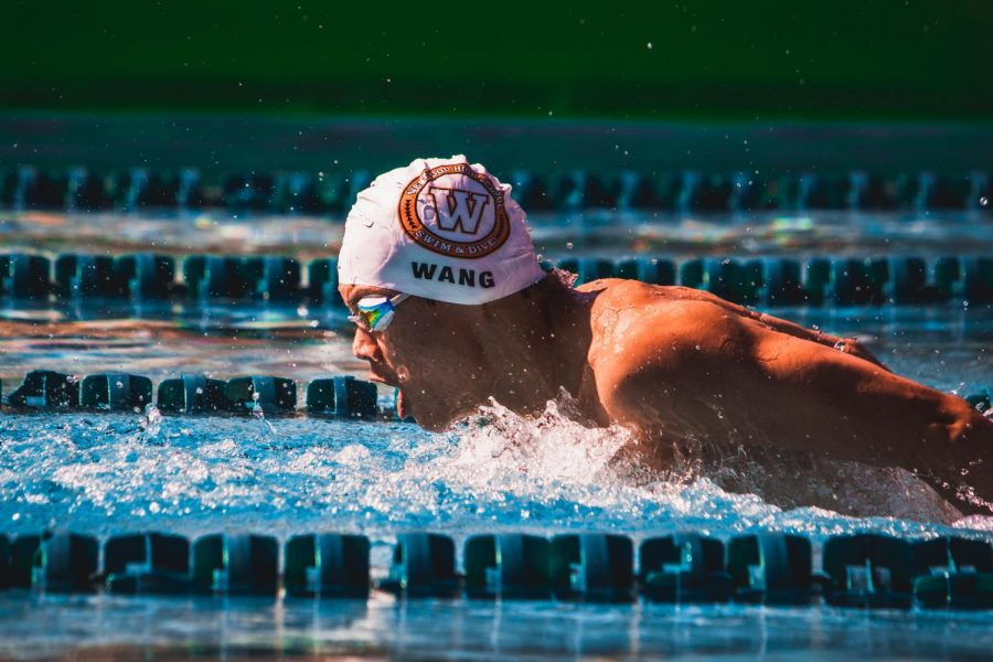 With a 3 second lead on the next fastest swimmer, Sonny Wang claims victory in the 100 yard butterfly. Wang placed 1st in both of his individual events at this meet and brought the team's 4x100 yard freestyle relay victory as well.