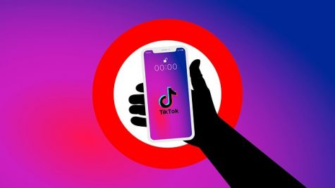 Which Side of TikTok Are You On?