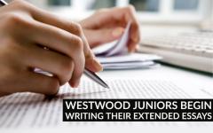 IB Juniors Begin Their Extended Essays