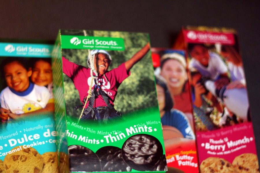 How Much Do You Know About Girl Scout Cookies?