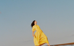Lorde released her new album, Solar Power, on August 20. The promotional image above was found plastered all over social media as she released the title tracks music video.